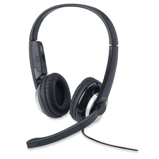 Stereo Headset, w/ Audio Control, Silver/Black